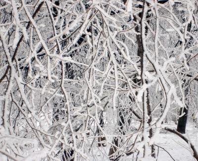 Сибирские морозы дошли доГреции